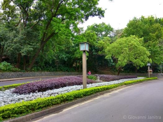 Beitou Road, Taiwan